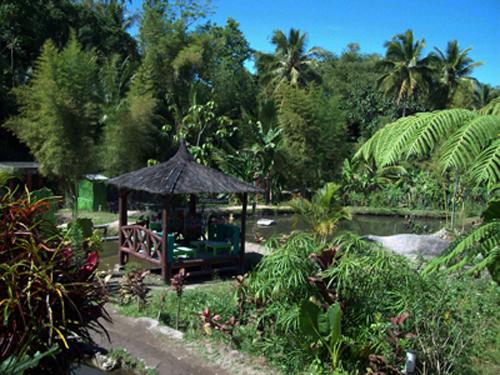 Desa Kembangarum rental mobil yogyakarta