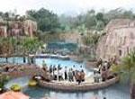 Taman Safari Prigen7 Malang Tour