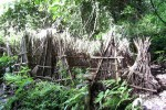 wisata Desa Truyan Bali