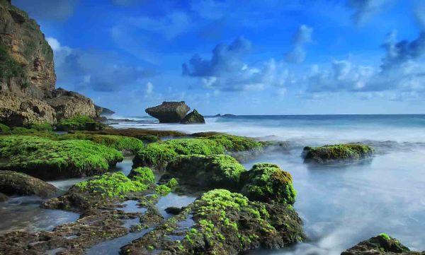 Pantai Jogan Gunungkidul Rental Mobil Jogja Harga Sewa Mobil Rp 50rb