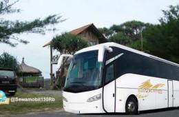 Sewa Bus Jogja Bali Denpasar Bromo Malang