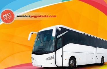 big-bus.jpg